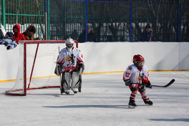 Турнир по хоккею с шайбой среди команд 2010-2011 г.р. 2018